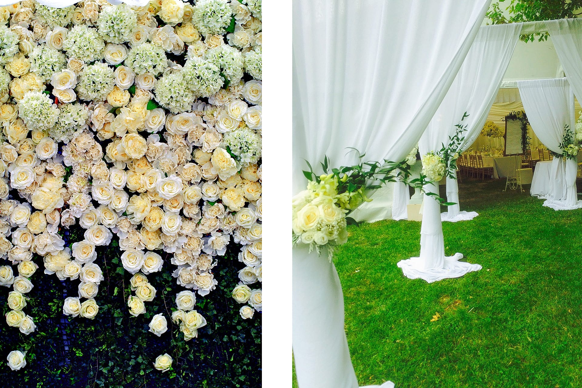 Kim Chan Events |flower wall of roses hydrangeas and peonies all in white,  and fabric drape corridor archway to reception area