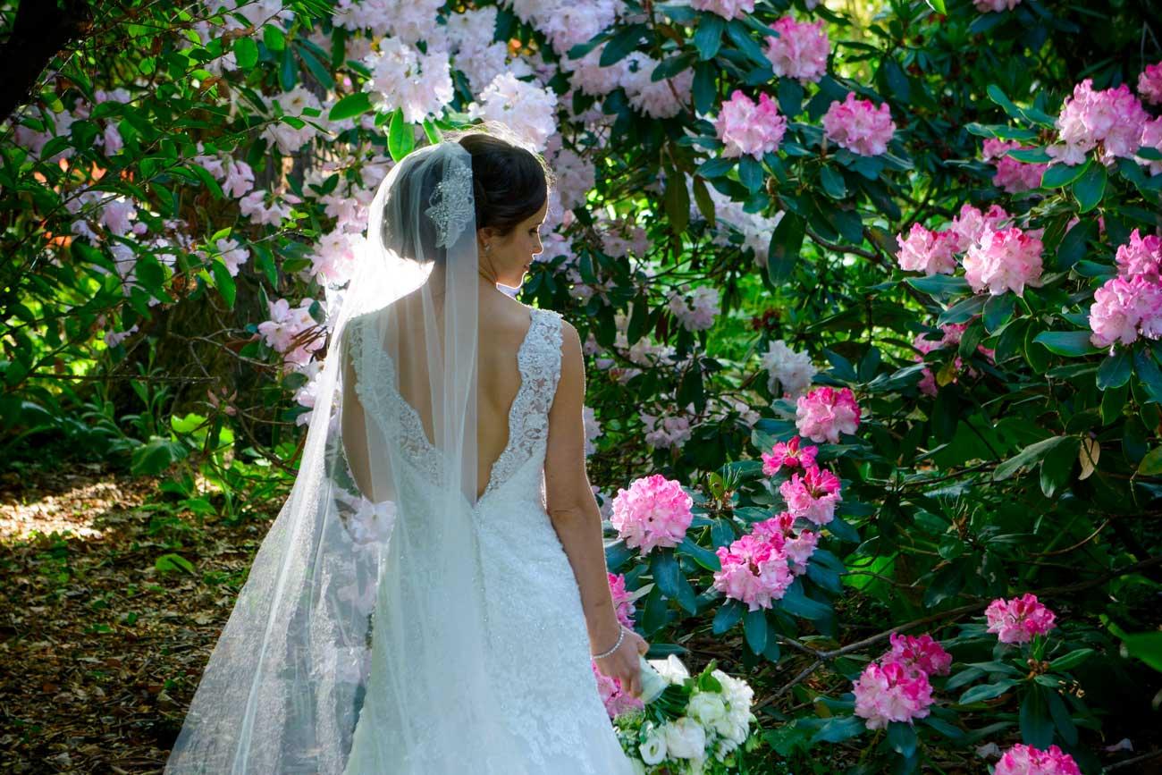 Bride amongst the flowers