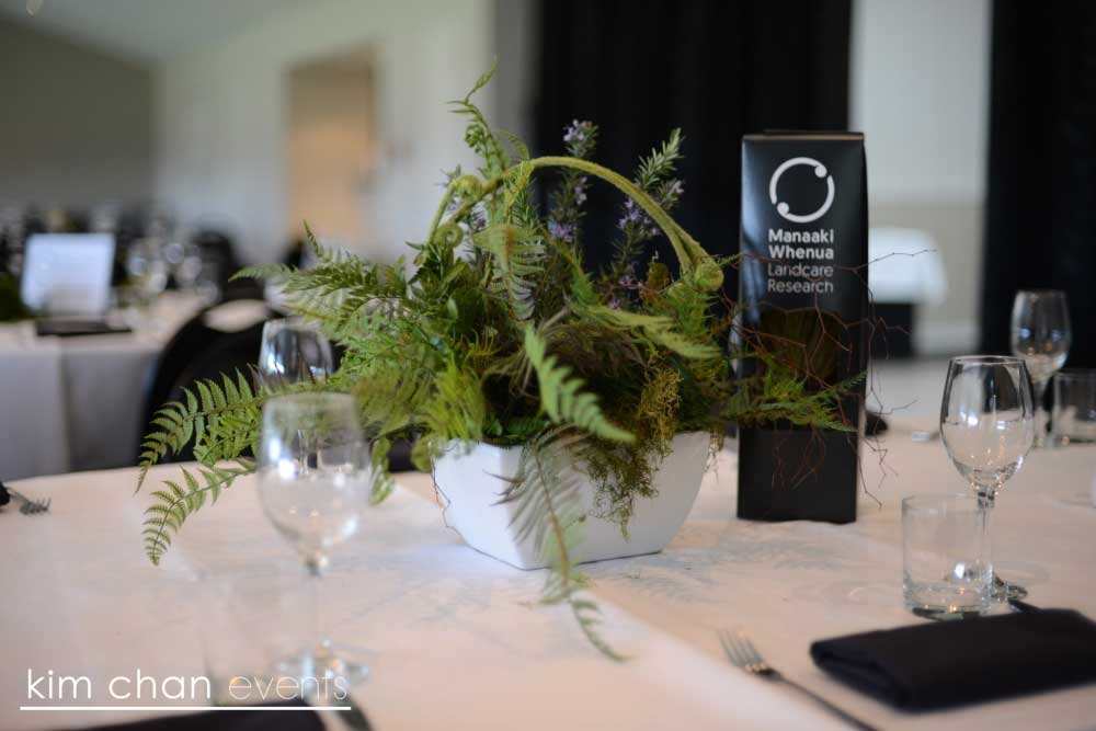 Native Ferns for a Corporate Function