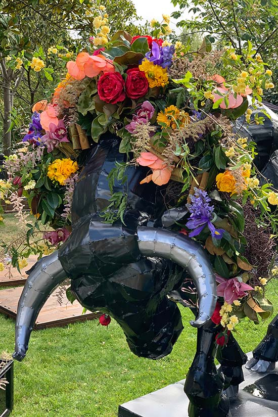 Bull with floral wreath at Katrina's 50th birthday party