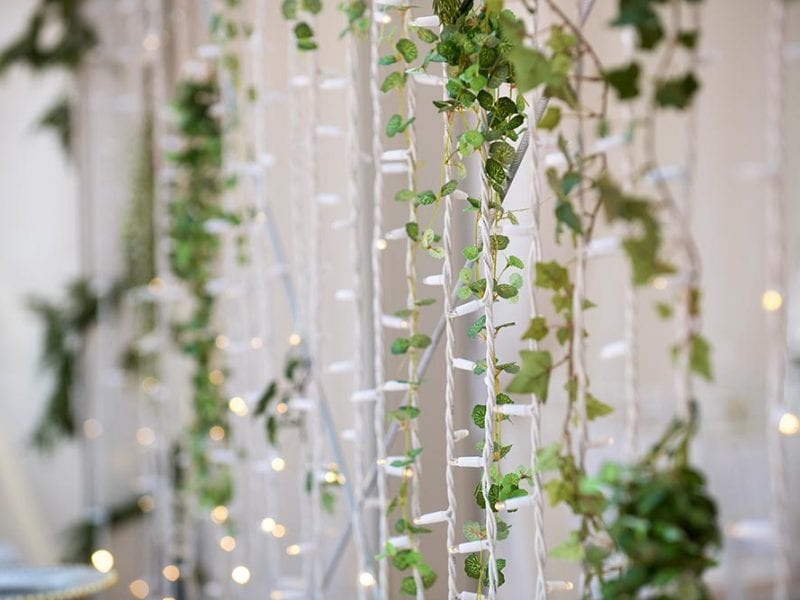 Fairy lights with interwoven greenery